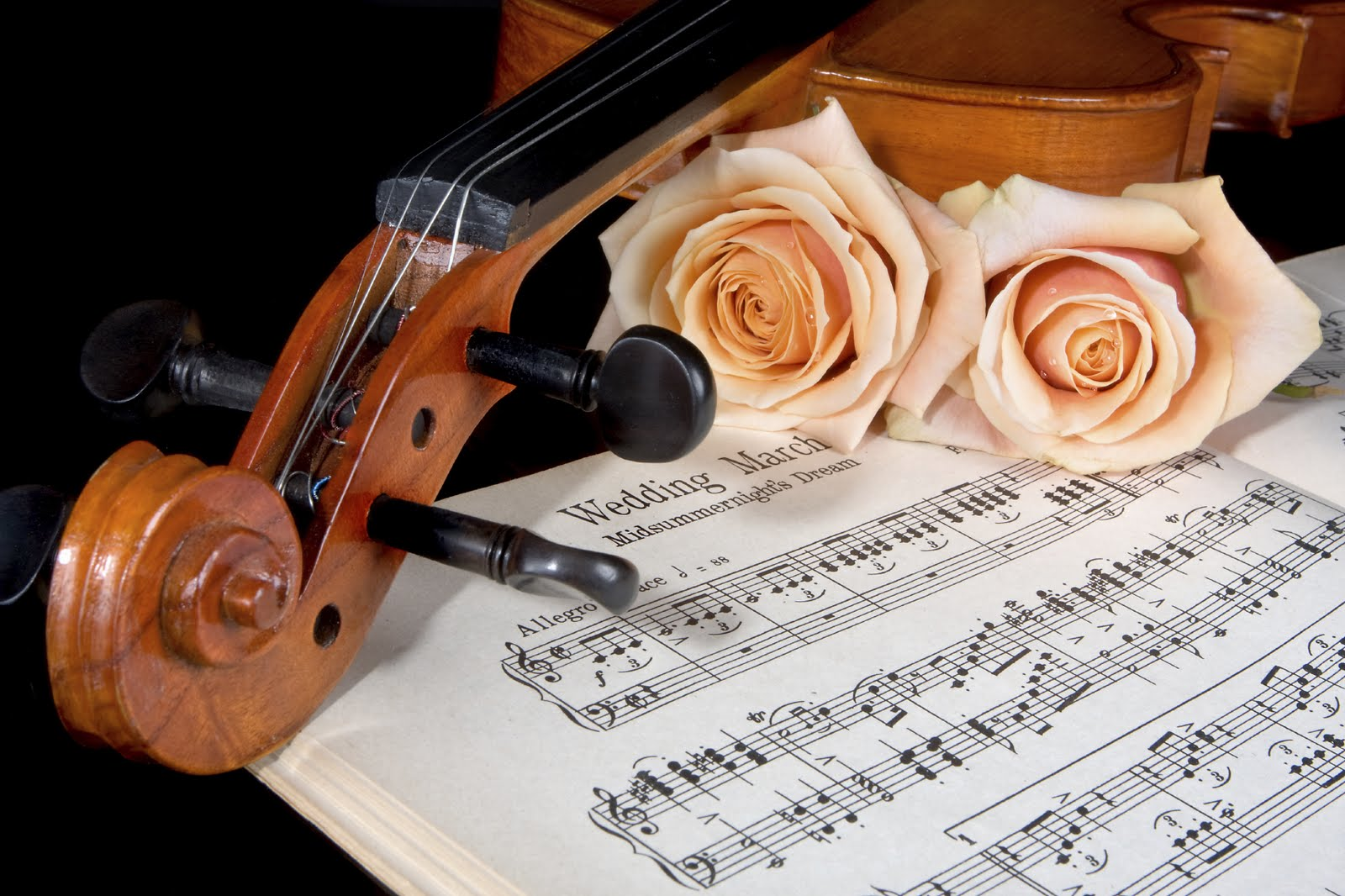Красивые картинки и музыка к ним, открытка